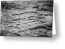 The Zen Path Bw Greeting Card
