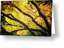 Then Autumn Arrives 03 Greeting Card
