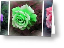 There Were Roses Triptych Greeting Card