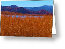 There's A Lake Over There Greeting Card
