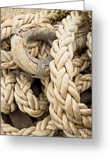 Braided Rope With Eyelet Greeting Card
