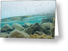Thick Ice Sheet Underwater Over Rocky Lake Bottom Greeting Card