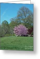 Think Spring Greeting Card