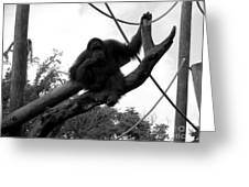 Thinking Of You Black And White Greeting Card