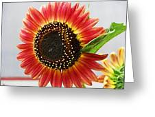 Thinking Summer Greeting Card