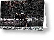 Thirsty Moose Impressionistic Digital Painting Greeting Card
