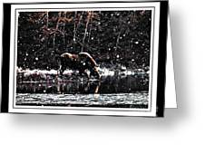 Thirsty Moose Impressionistic Painting With Borders Greeting Card