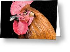 this Rooster Means Business Greeting Card