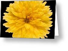 This Yellow Chrysanthemum Greeting Card