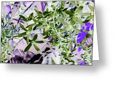 Thistle Greeting Card