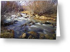 Thomas Creek Greeting Card