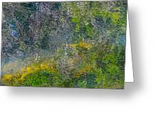 Thornton's Canvas Greeting Card by Roxy Hurtubise