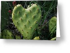 Thorny Heart Greeting Card