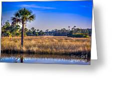 Those Quiet Sounds Greeting Card by Marvin Spates
