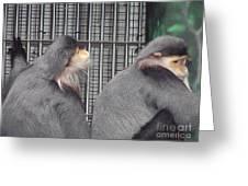 Thoughtful Monkeys Greeting Card