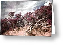 Thoughtless Roots  Greeting Card