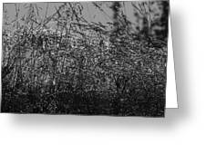 Thousands Of Shimmering Raindrops - Monochrome Greeting Card