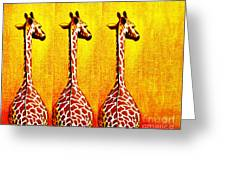 Three Amigos Giraffes Looking Back Greeting Card