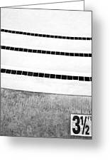 Three And A Half Bw Palm Springs Greeting Card