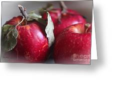 Three Apples Greeting Card