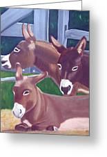 Three Donkeys Greeting Card