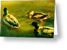 Three Ducks On Golden Pond Greeting Card