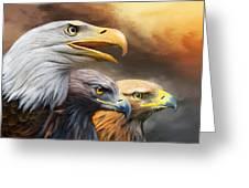 Three Eagles Greeting Card