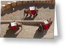 Three Elephants At Amber Fort Greeting Card