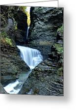 Three Falls In Watkins Glen Greeting Card