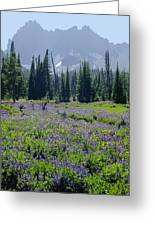 105417-three Fingered Jack And Wildflowers Greeting Card