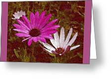 Three Flowers On Maroon Greeting Card