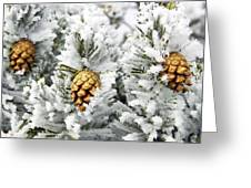 Three Frosty Cones Greeting Card