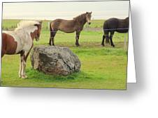 There Were Three Horsegirls And One Big Gray Stone  Greeting Card