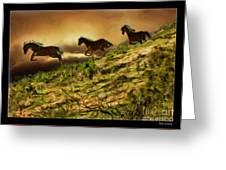 Three Horse's On The Run Greeting Card
