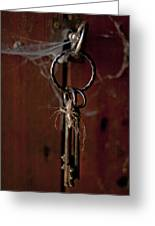 Three Keys Greeting Card by Georgia Fowler