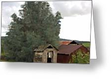 Three Old Sheds Greeting Card by Charlette Miller