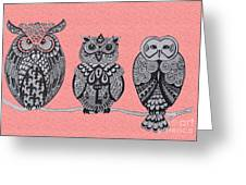 Three Owls On A Branch Pink Greeting Card
