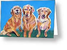 Three Playful Goldens Greeting Card