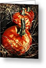Three Pumpkins Greeting Card