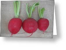Three Red Radishes Greeting Card