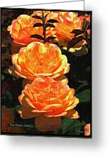 Four Rose At Mcc Greeting Card