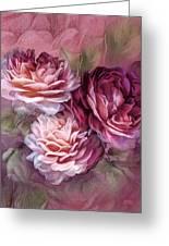 Three Roses Burgundy Greeting Card Greeting Card