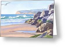 Three Seagulls At Coronado Beach Greeting Card