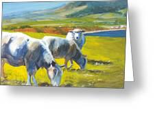 Three Sheep On A Devon Cliff Top Greeting Card