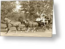 Three Team Four Wheel Cart Greeting Card by Wayne Sheeler
