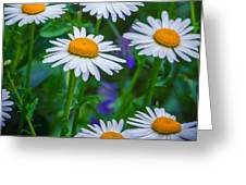 Three Tiers Of Beauty Greeting Card