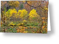 Three Yellow Trees Greeting Card