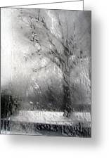 Through Glass -- A Tree In Winter Greeting Card