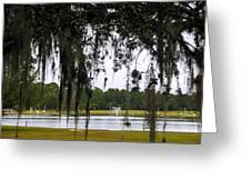 Through Live Oak Tree Greeting Card