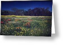 Through The Blooming Fields Greeting Card
